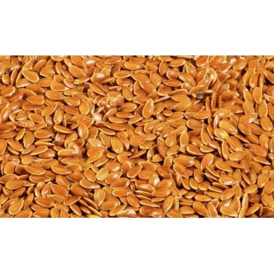 Alsi Seeds (Flax seeds) - LINUM USITATISSIMUM