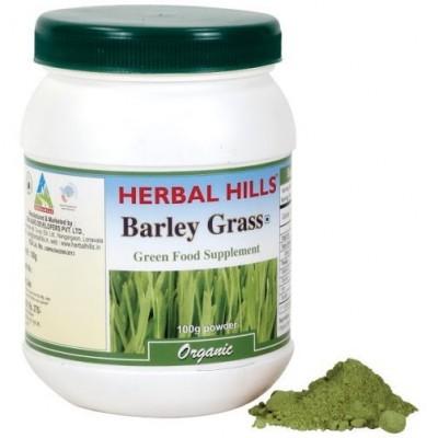 Barley Grass. 100 Gms Powder