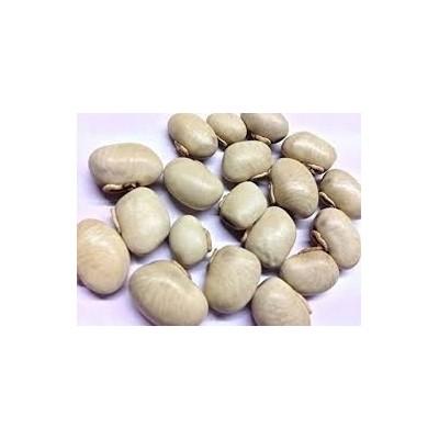 Kaunch Seeds – Kaunch Beej – Mucuna Pruriens (White)
