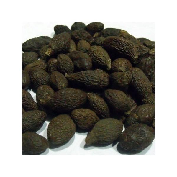 Niranjan Phal - Sterculia lychnophora - Malva nuts
