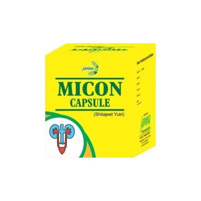 Micon Capsule(Shilajeet Yukt)