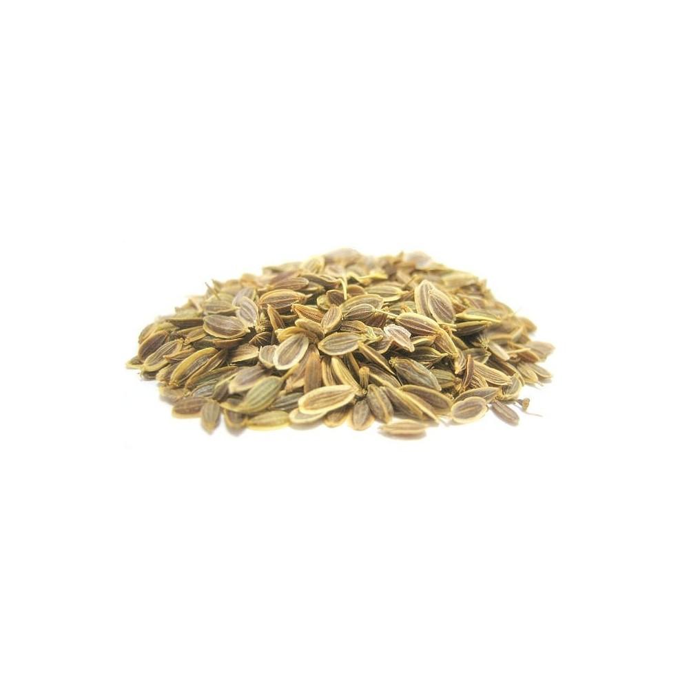 Dill Seeds – Suwa Seeds – Anthem Graveolens