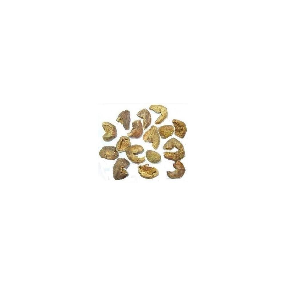 Harad Chilka – Harar Chilka – Haritaki – Terminalia Chebula