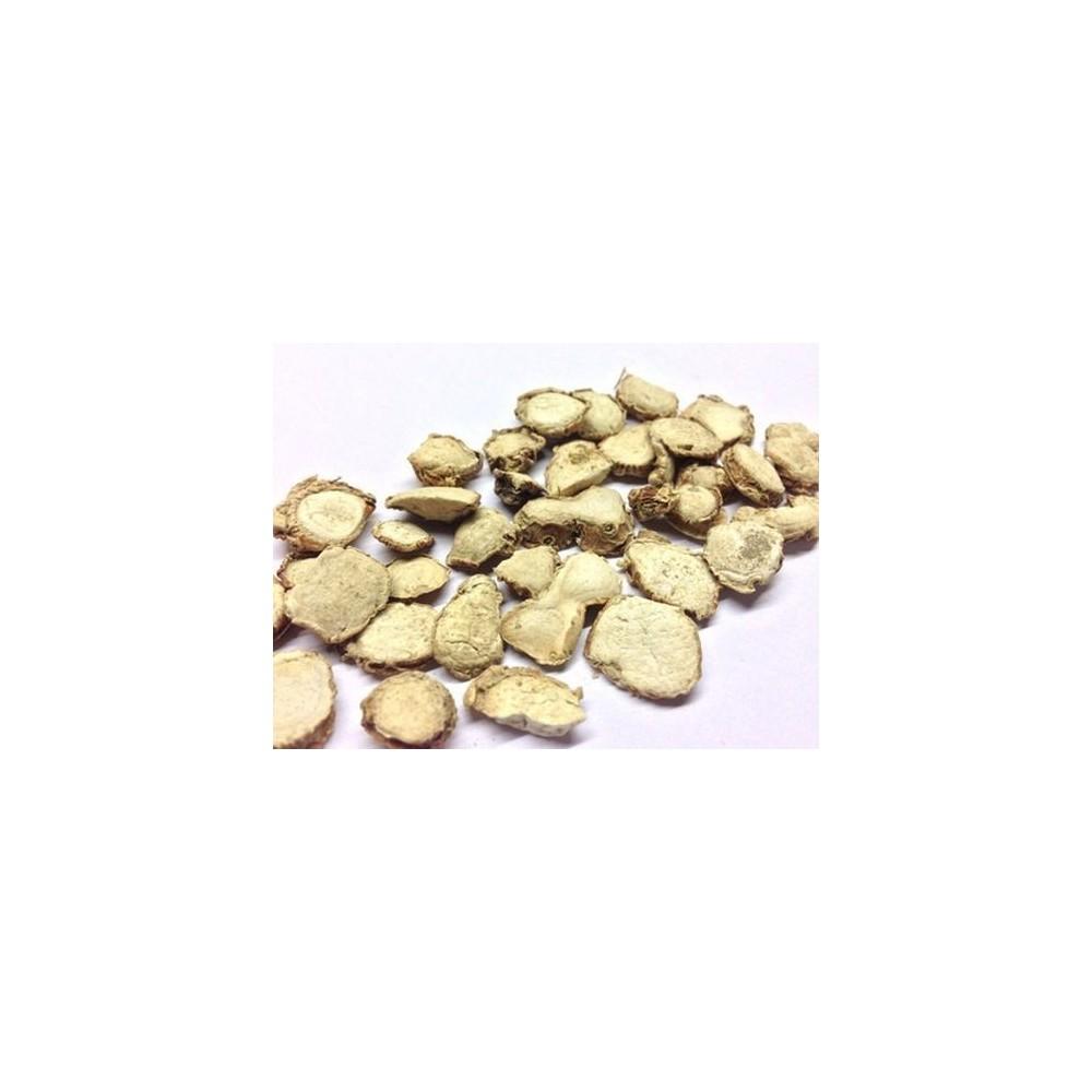 Kapoor Kachri – Ginger Lily – Hedychium Spicatum