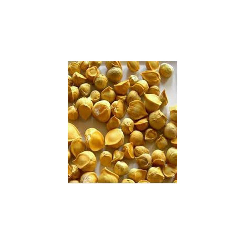 Kashmiri Lahsun – Kashmiri Garlic – Snow Mountain Garlic