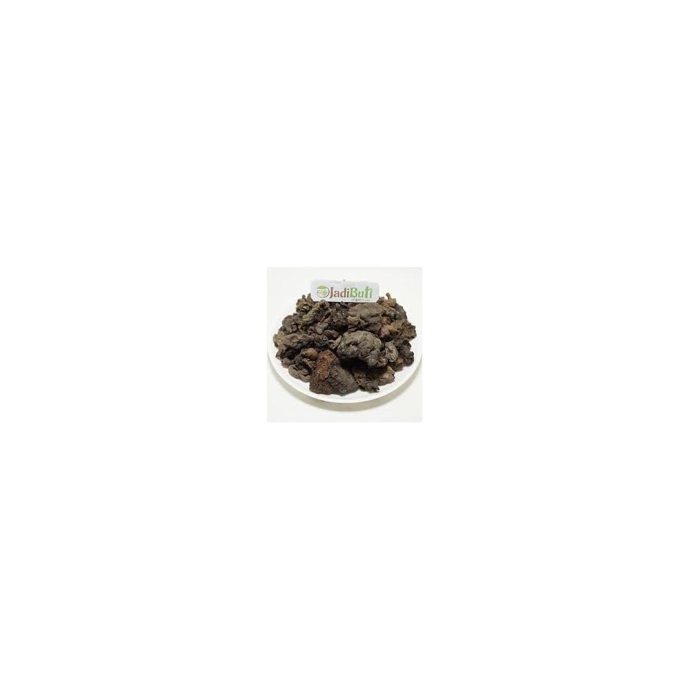 Mochras – Red Silk Cotton Tree – Bombax Ceiba - Jalaram Herbs online @  Ayurvedmart