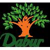 Dabur Shinagarbha Ras