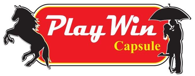 Playwin